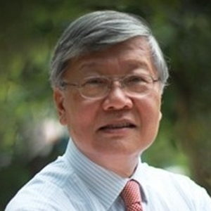 Andrew Sheng (Distinguished Fellow, Asia Global Institute at The University of Hong Kong)
